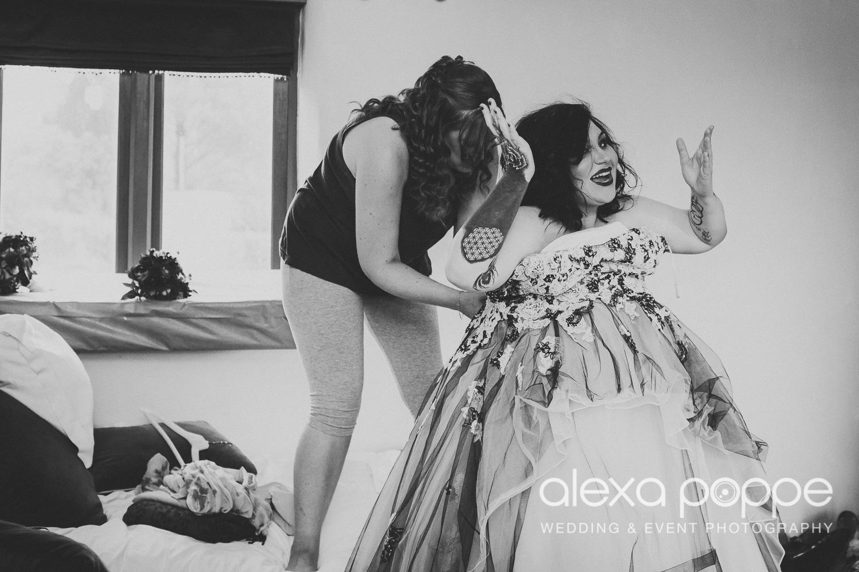 LM_wedding_trevenna_cornwall-7.jpg