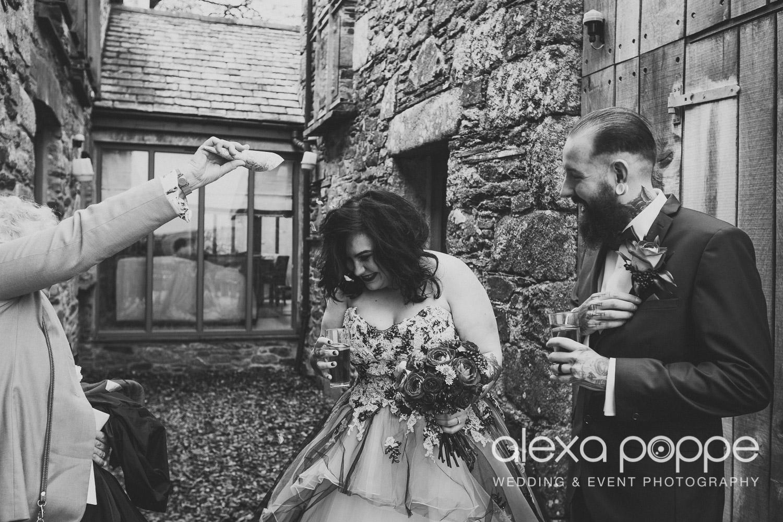 LM_wedding_trevenna_cornwall-33.jpg