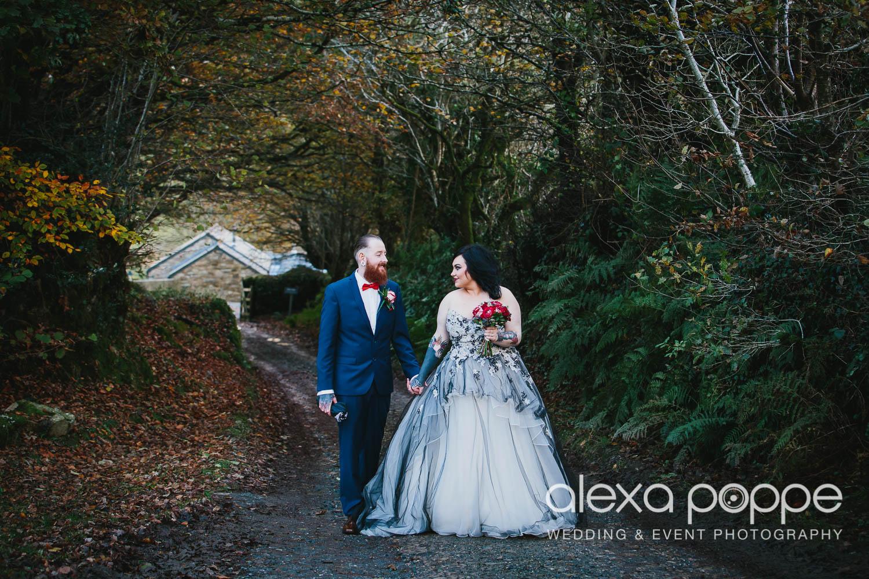 LM_wedding_trevenna_cornwall-45.jpg