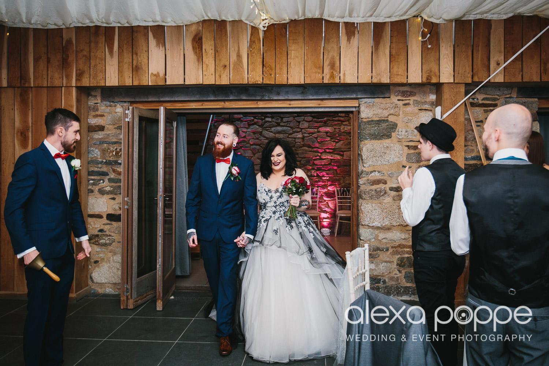 LM_wedding_trevenna_cornwall-53.jpg