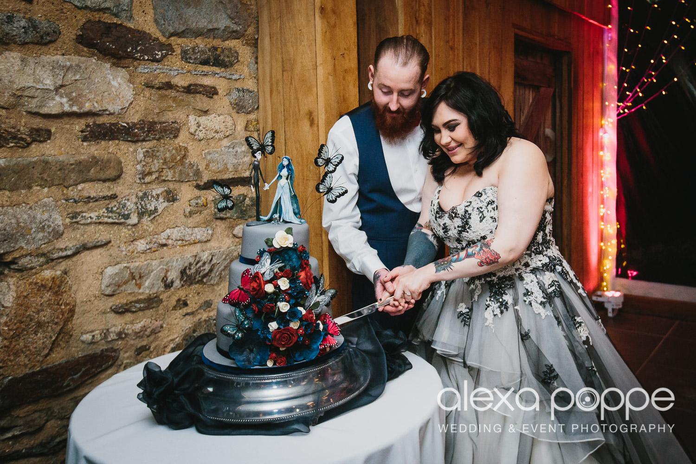 LM_wedding_trevenna_cornwall-79.jpg