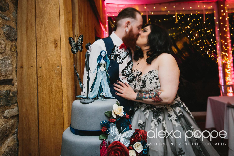 LM_wedding_trevenna_cornwall-80.jpg
