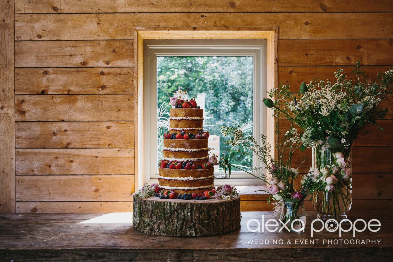 BP_wedding_nancarrow-57.jpg