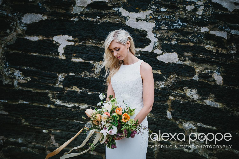 HS_wedding_foweyhall-70.jpg