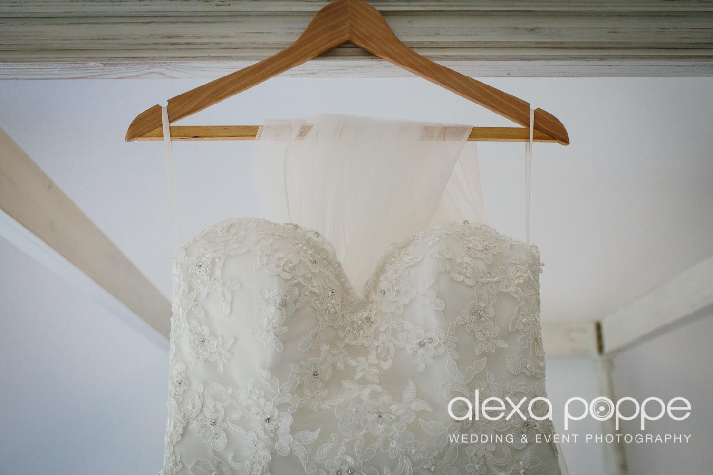 DC_wedding_edenproject-2.jpg