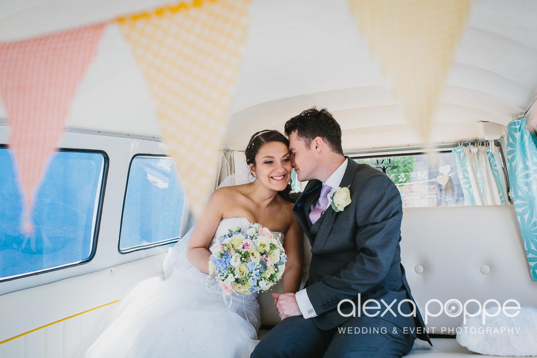 DC_wedding_edenproject-38.jpg