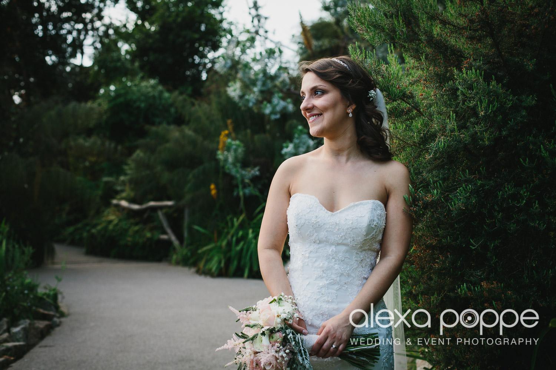 DC_wedding_edenproject-52.jpg