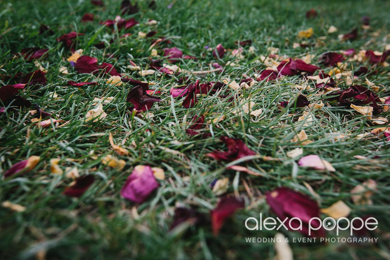 HF_wedding_cornwall-36.jpg