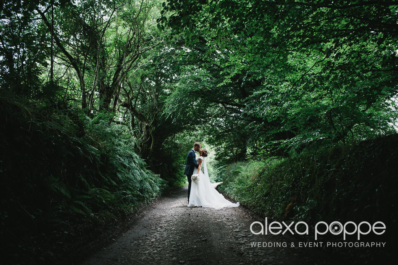 NH_wedding_trevennbarns_wm-2.jpg