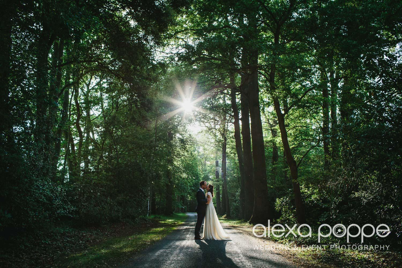 ST_wedding_rockbearemanor_wm_1.jpg