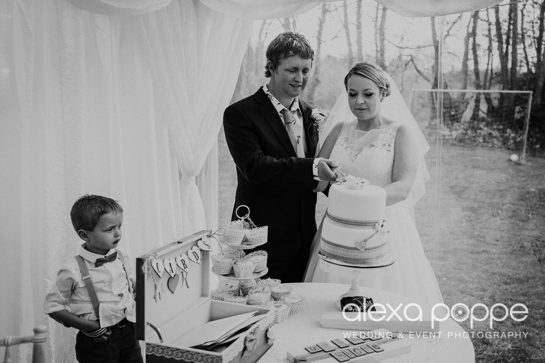 RW_wedding_kilminorthcottages_44.jpg