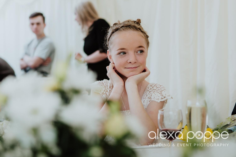 RW_wedding_kilminorthcottages_52.jpg