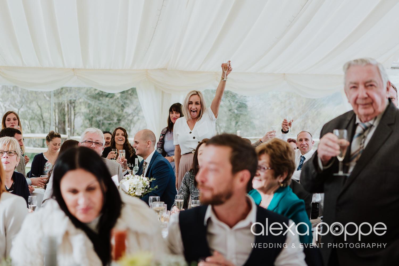 RW_wedding_kilminorthcottages_55.jpg