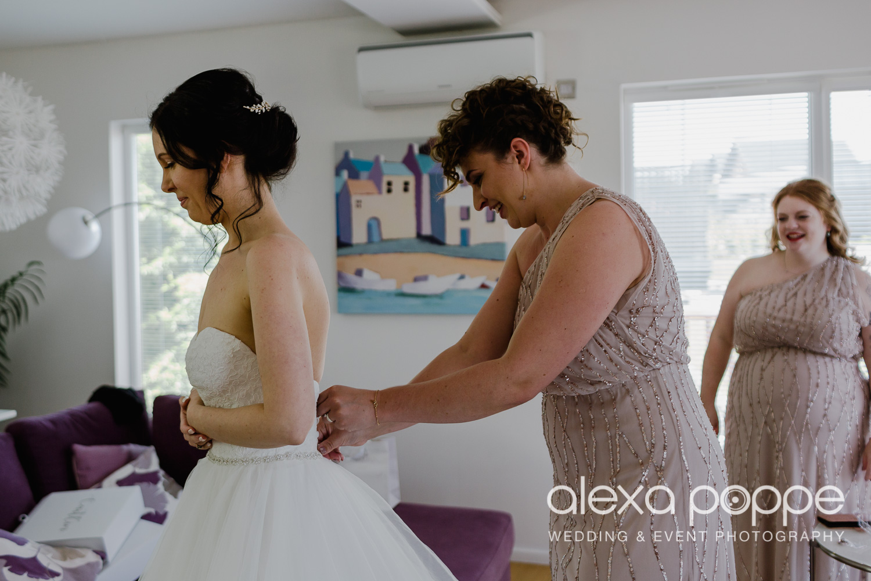 FE_wedding_gwelabmor_portreath_12.jpg
