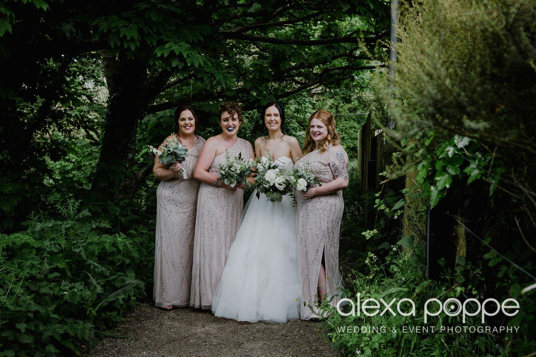 FE_wedding_gwelabmor_portreath_34.jpg