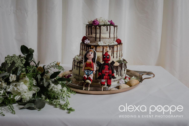 FE_wedding_gwelabmor_portreath_80.jpg