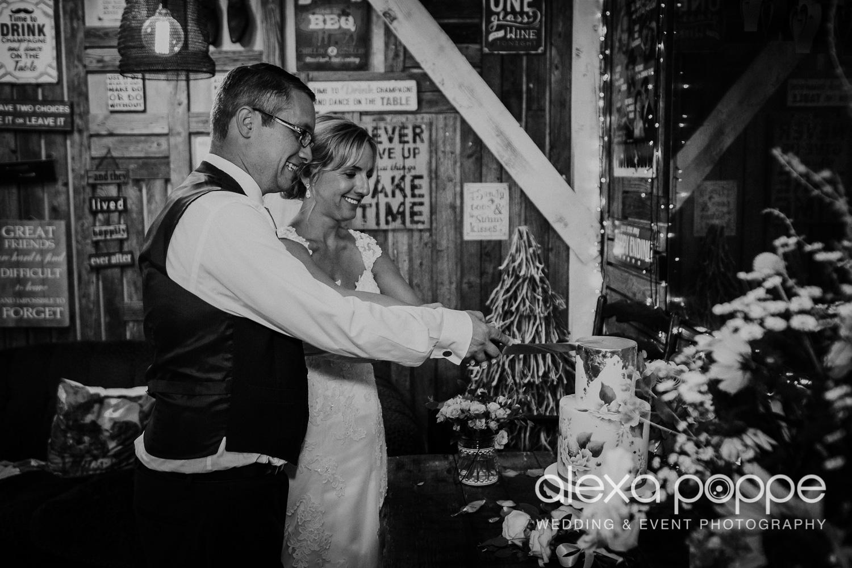 AH_wedding_lowerbarns_85.jpg
