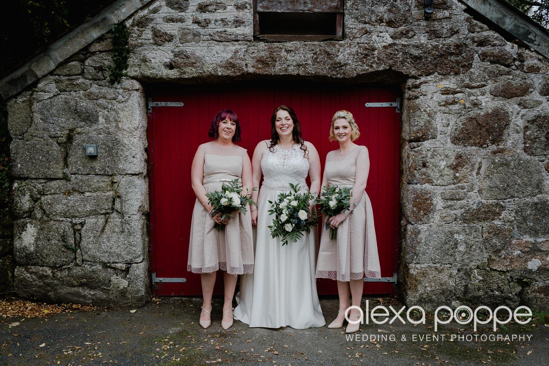 AM_wedding_knightorwinery_cornwall_31.jpg