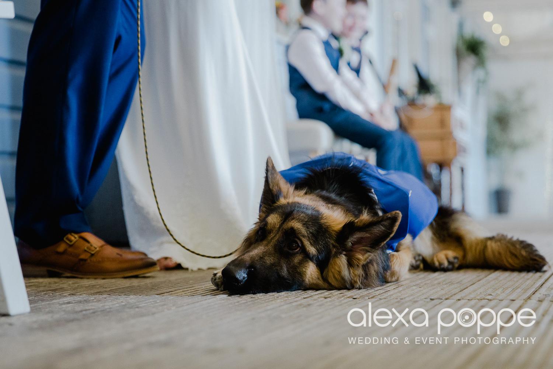 RA_wedding_lustyglaze_4.jpg