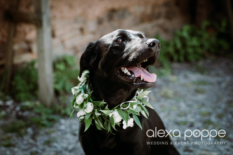 HE_wedding_mountpleasant_ecopark_44.jpg