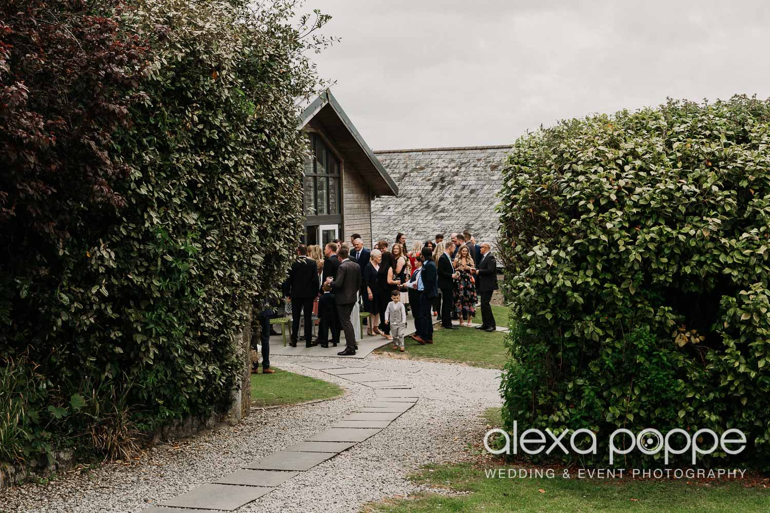 NT_wedding_thegreen_cornwall_3.jpg