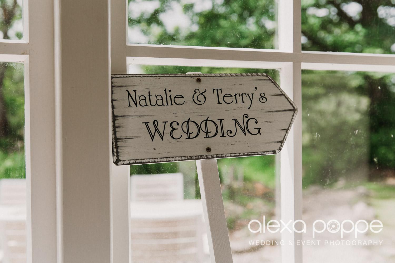 NT_wedding_thegreen_cornwall_4.jpg