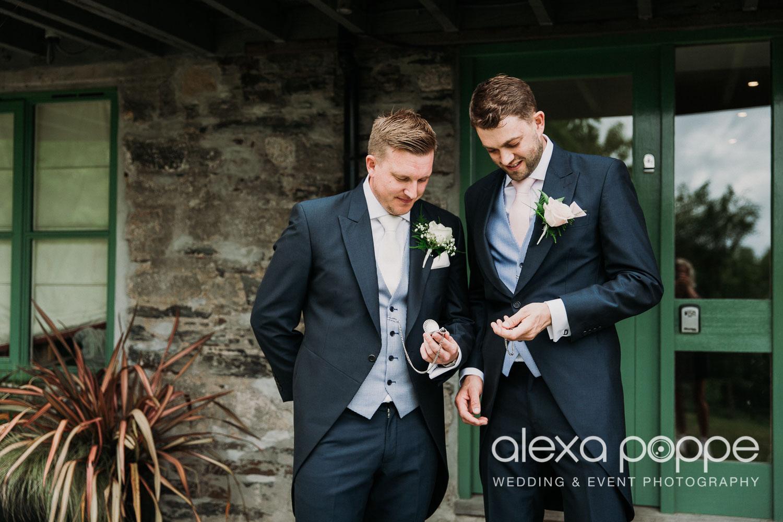 NT_wedding_thegreen_cornwall_15.jpg