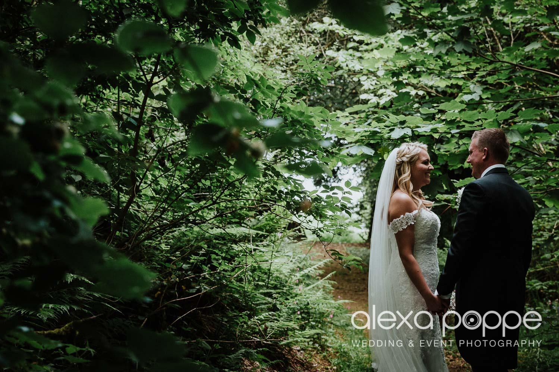NT_wedding_thegreen_cornwall_47.jpg
