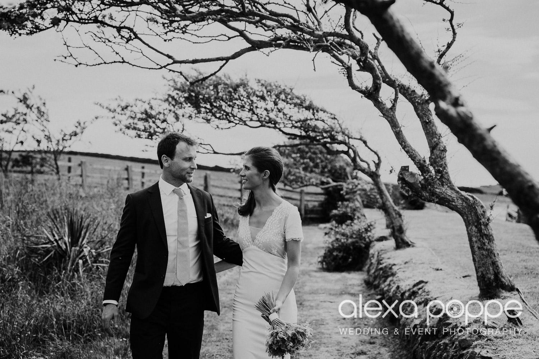 JN_wedding_roscarrock_cornwall_70.jpg