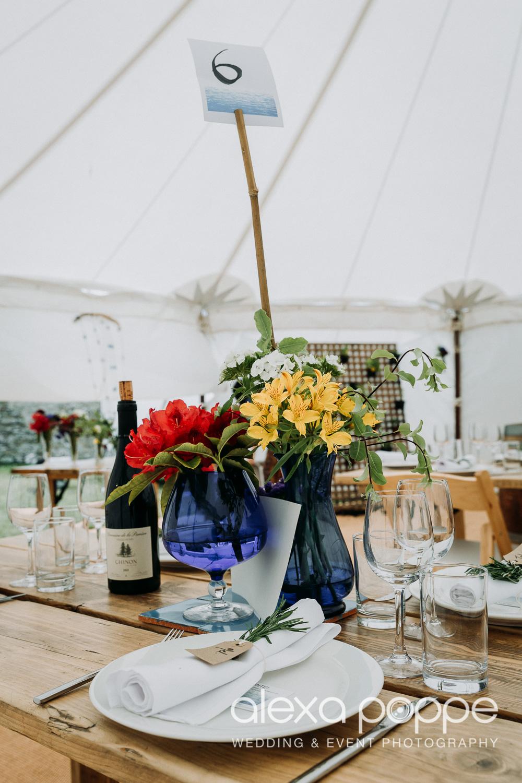 JN_wedding_roscarrock_cornwall_82.jpg