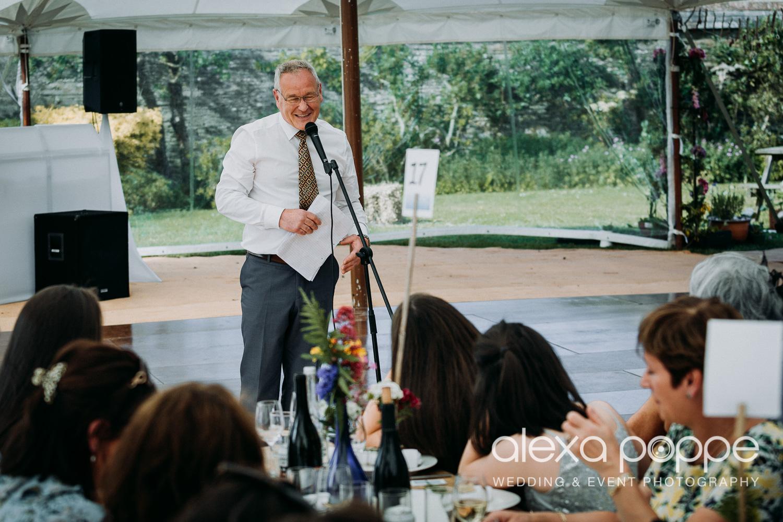 JN_wedding_roscarrock_cornwall_87.jpg