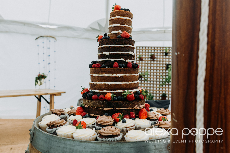 JN_wedding_roscarrock_cornwall_96.jpg
