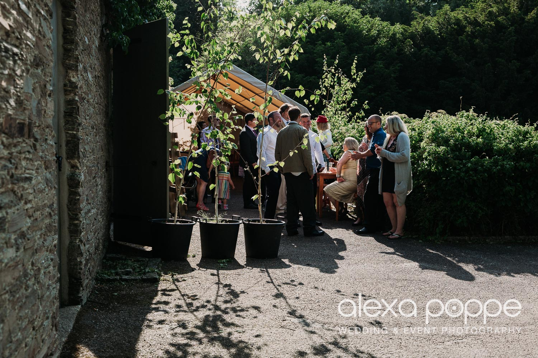 BA_wedding_trelissick_25.jpg