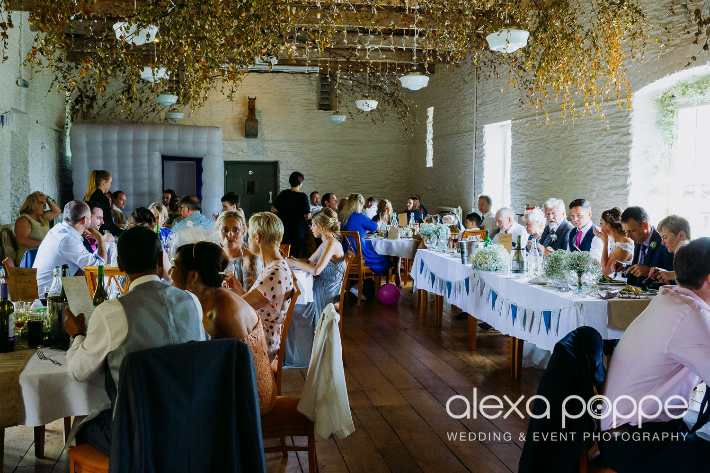 BA_wedding_trelissick_49.jpg