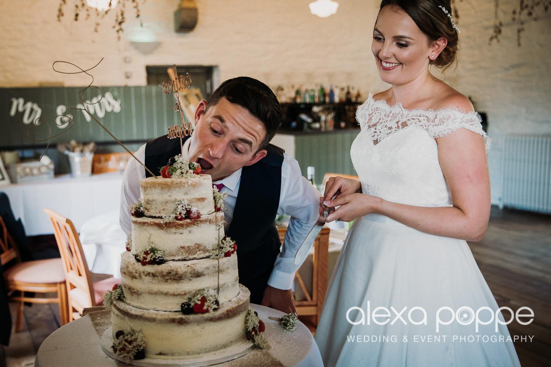 BA_wedding_trelissick_75.jpg