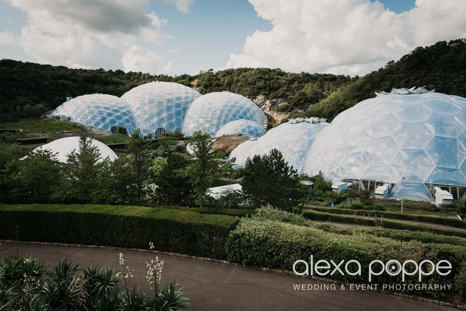 VA_wedding_edenproject_carnglaze_49.jpg