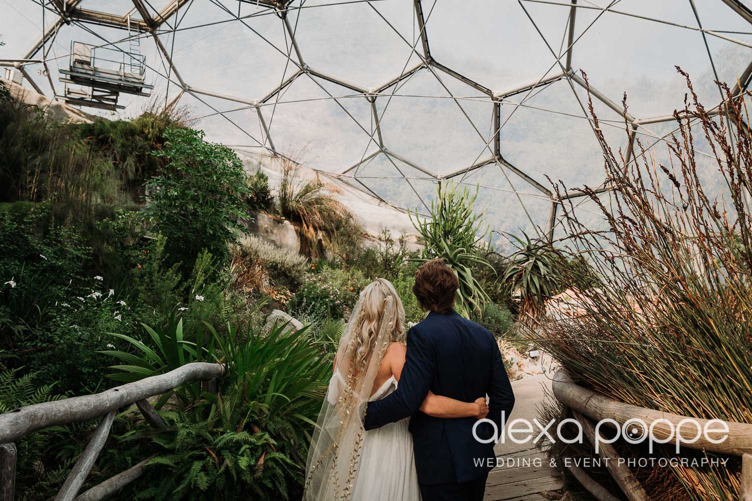 VA_wedding_edenproject_carnglaze_55.jpg