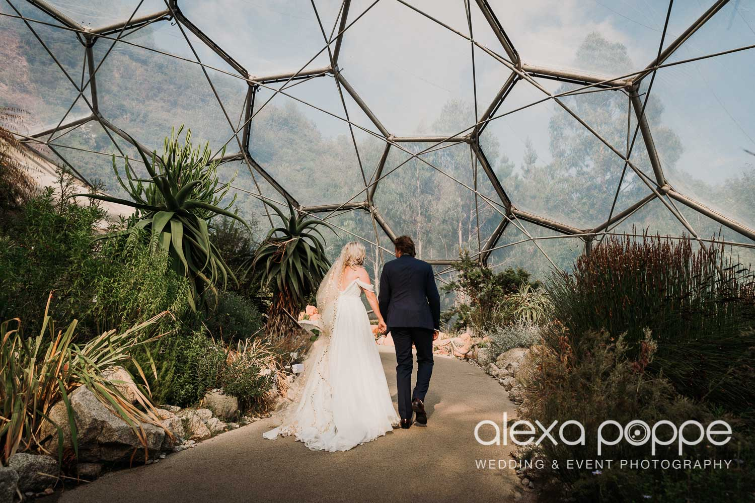 VA_wedding_edenproject_carnglaze_56.jpg