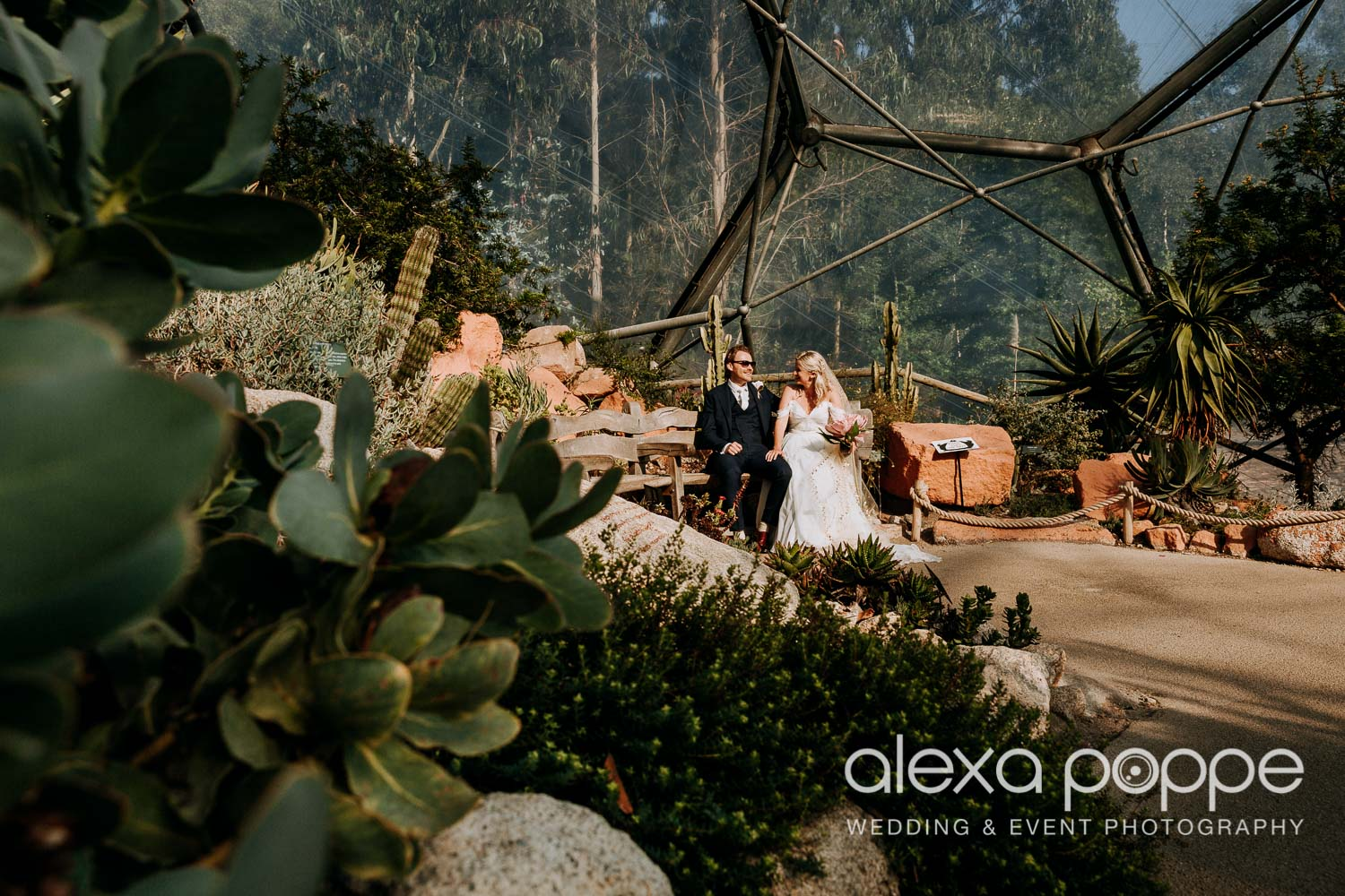 VA_wedding_edenproject_carnglaze_60.jpg