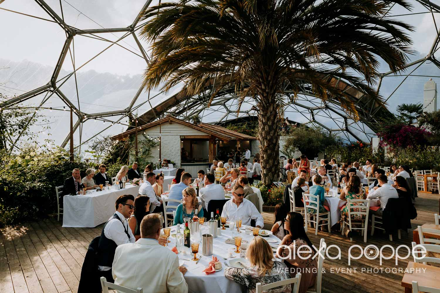 VA_wedding_edenproject_carnglaze_75.jpg