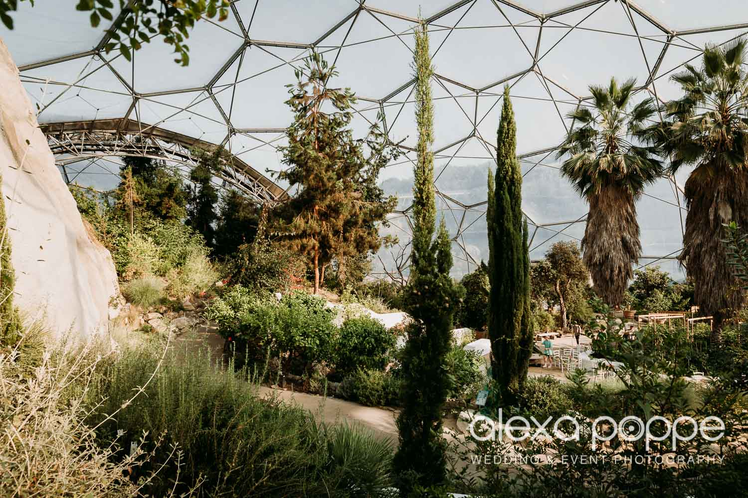 VA_wedding_edenproject_carnglaze_76.jpg