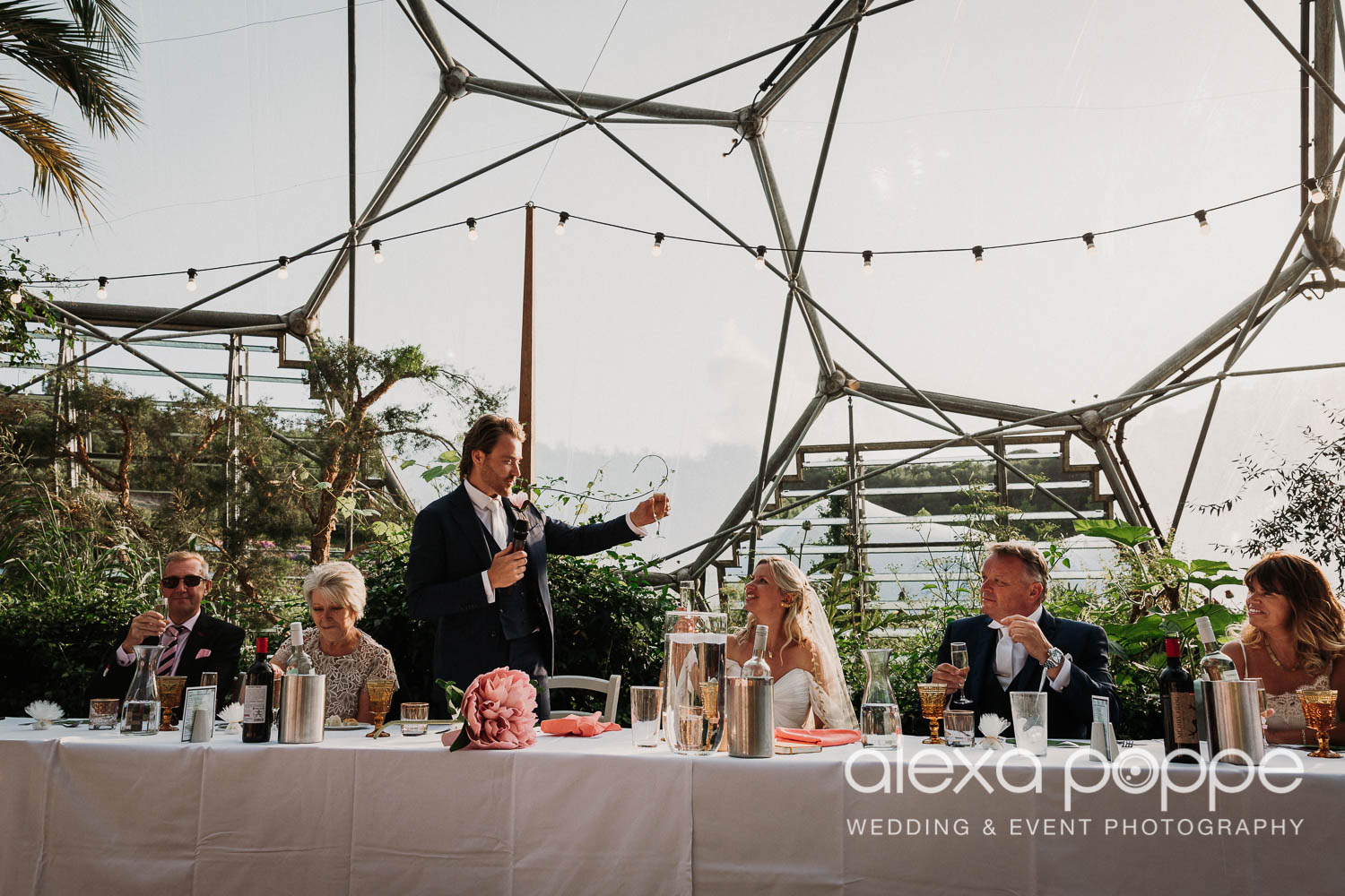 VA_wedding_edenproject_carnglaze_77.jpg