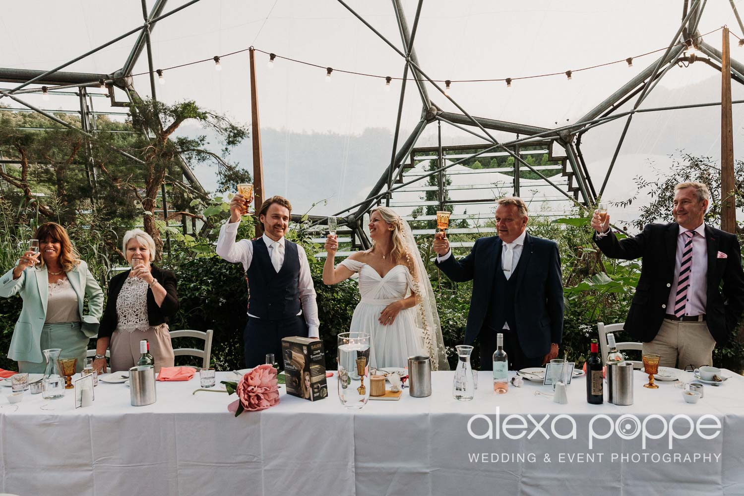 VA_wedding_edenproject_carnglaze_97.jpg