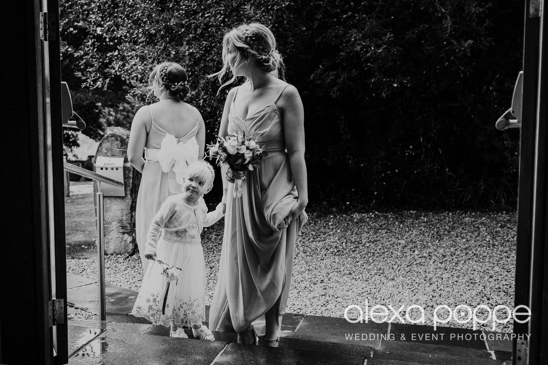 AA_wedding_thegreen_cornwall_3.jpg