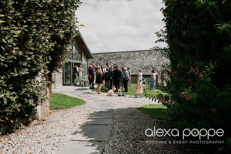 AA_wedding_thegreen_cornwall_14.jpg