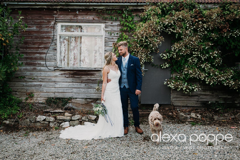 AA_wedding_thegreen_cornwall_33.jpg