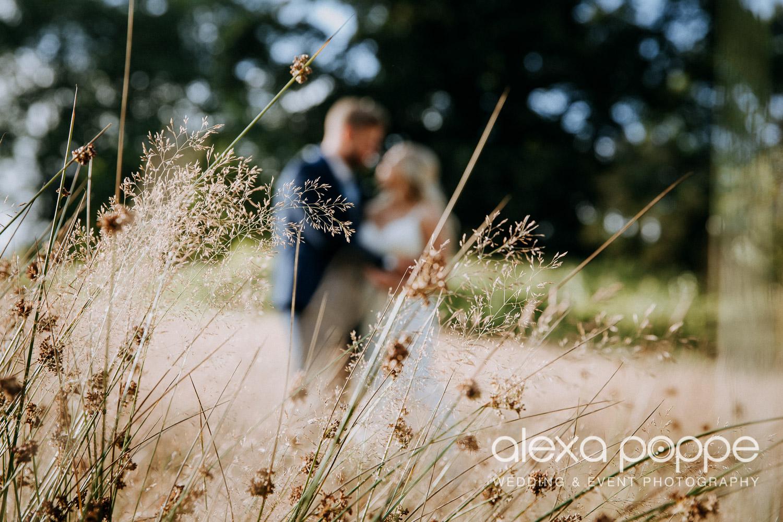 AA_wedding_thegreen_cornwall_58.jpg