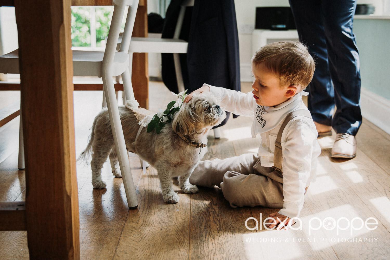 CP_wedding_thegreen_cornwall_16.jpg