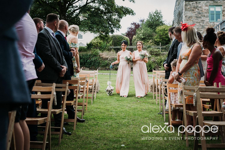 CP_wedding_thegreen_cornwall_24.jpg