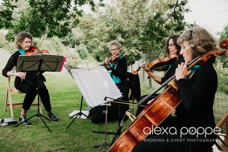 CP_wedding_thegreen_cornwall_36.jpg